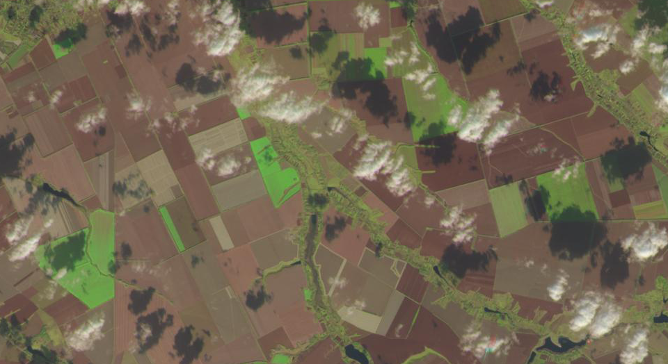Satellite monitoring for agribusiness