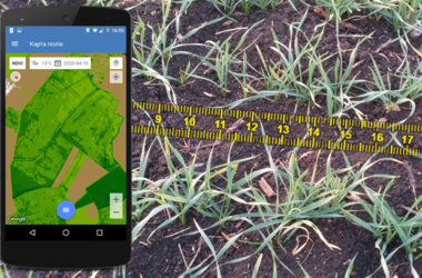Agronomist's tablet with the «Agroscouting» mobile app