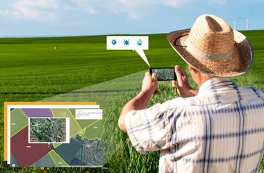 "New field survey features using the ""Agroscouting"" mobile application"