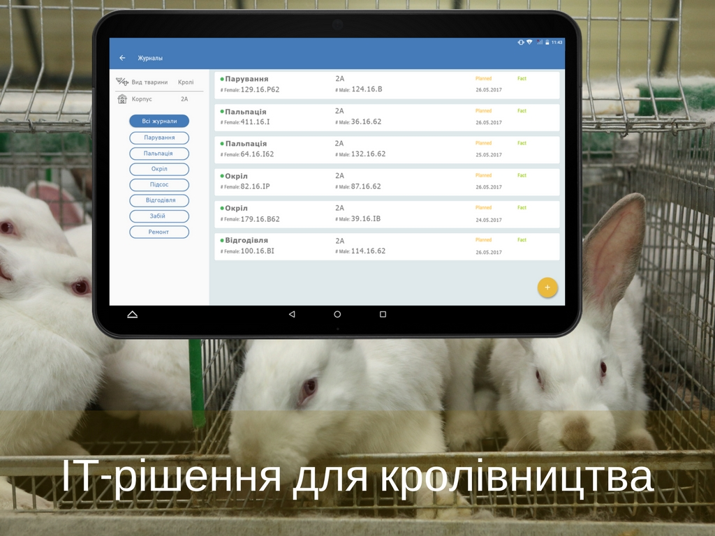 IT solutions for rabbit farming automation